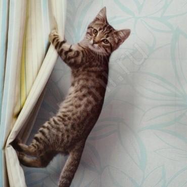 Как часто нужно стирать шторы